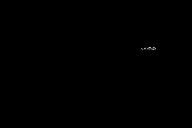 רצועת הארקה