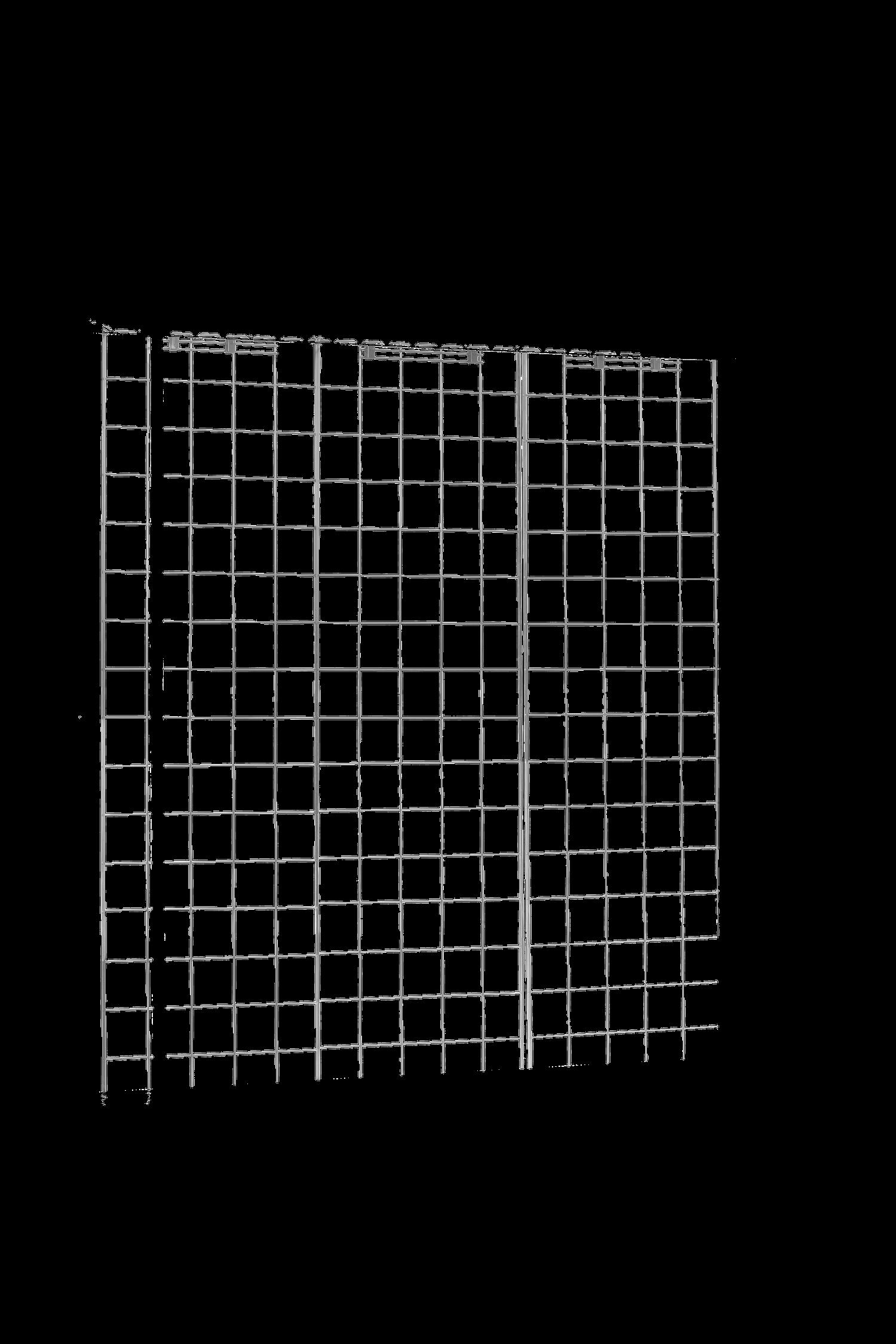 דופן רשת גב